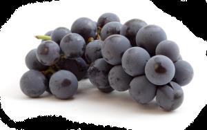 grapes-zh